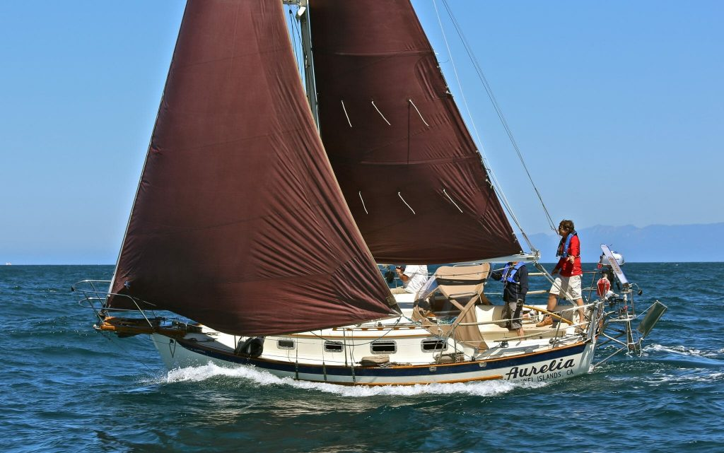 Aurelia sailboat